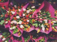 flowers-1245820_1920